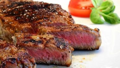 steaky z daniela